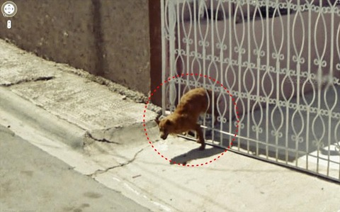 funny-google-street-view-photos-23